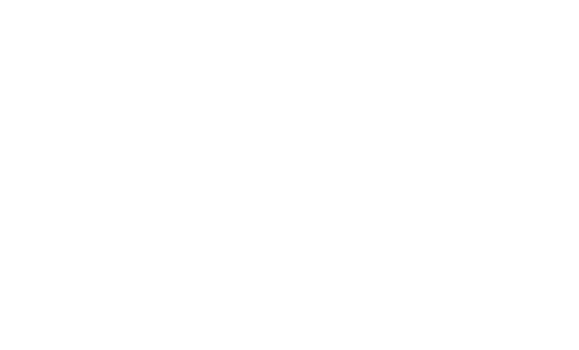 the dog outlet